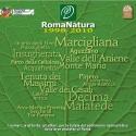 RomaNatura 1998-2010. I numeri, le attività, gli attori, per la tutela del patrimonio naturalistico delle aree protette di Roma