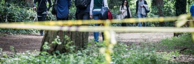 VILLA ADA, NON SOLO LE SCUDERIE REALI: IL DEGRADO CIRCONDA TUTTO L'AMBIENTE