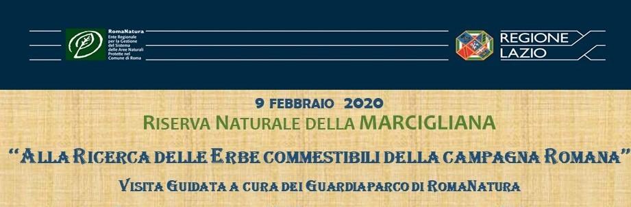 9 febbraio: Alla scoperta delle Erbe commestibili del Parco  Riserva Naturale della Marcigliana