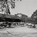 Colonia-Agricola-Bufalotta