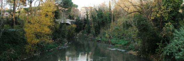 3 febbraio Rivedi la diretta dal Parco dei Castelli Romani di Buongiorno Regione